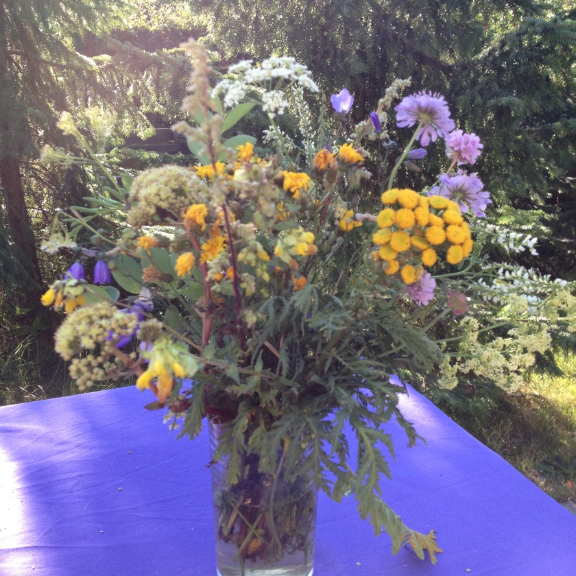 marielyst flowers Aug 2015